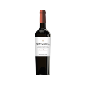 Montagudell Tinto 2020 0,75cl- Aymar
