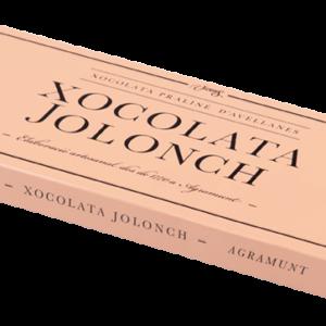 Chocolate halzelnut praline case Jolonch 100 gr – Torrons Vicens